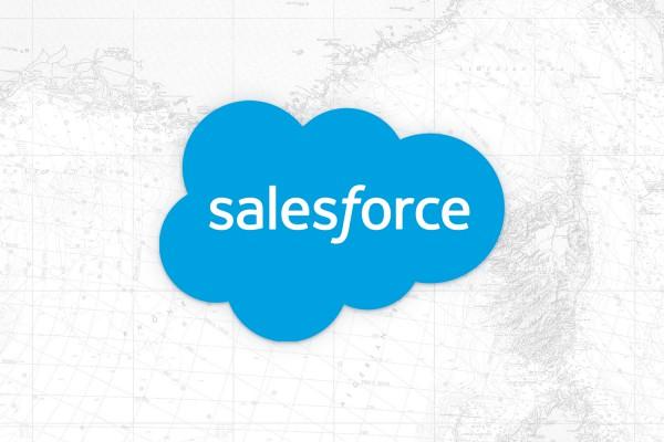 nuovo centro di competenza nesea con Salesforce